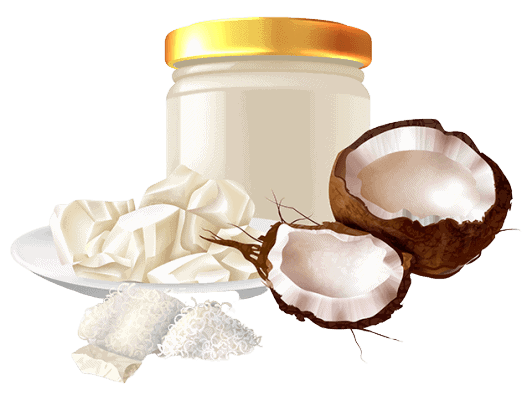 Shea Butter vs Coconut Oil