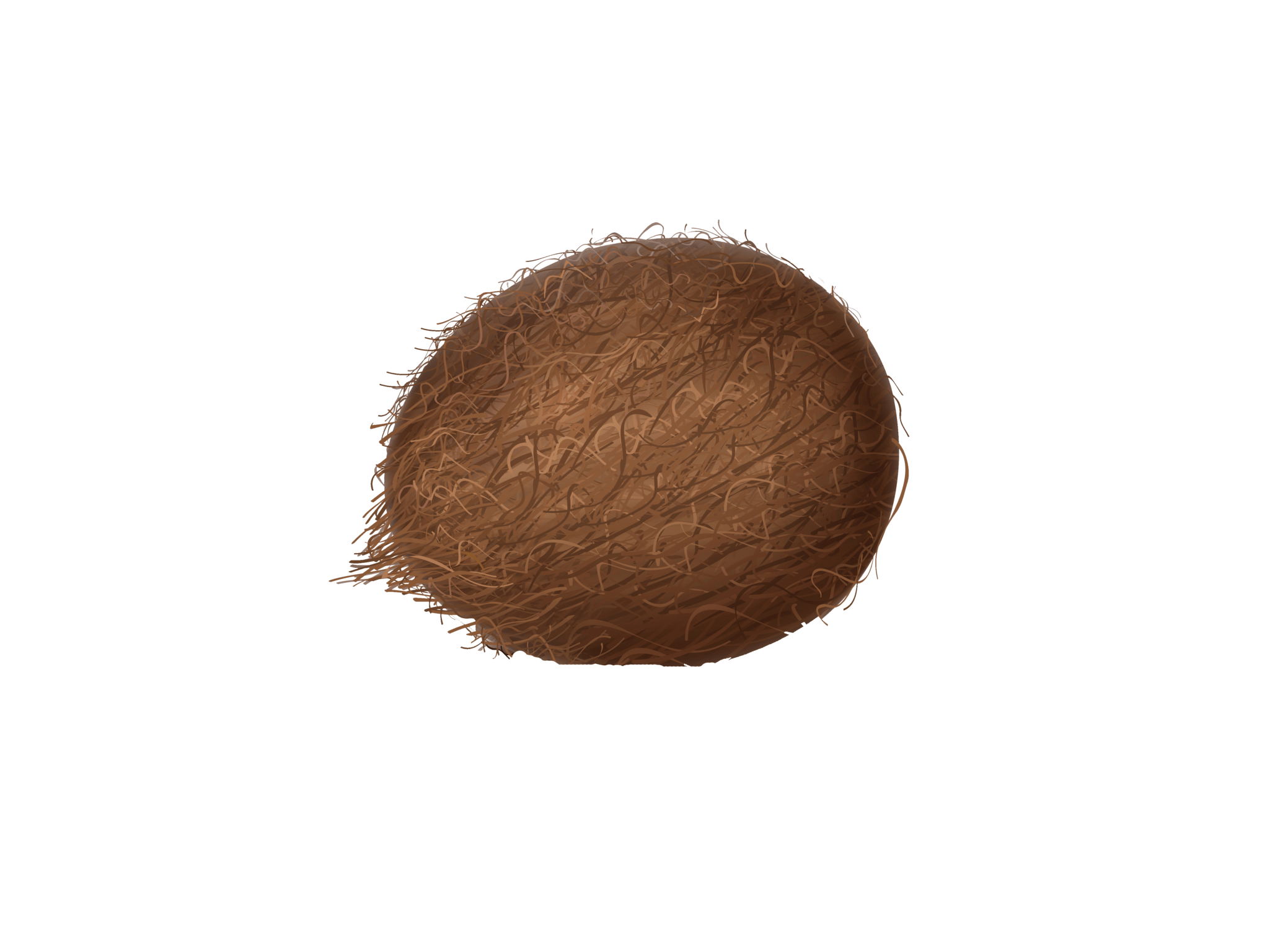 Buying Coconut Coir in Bulk