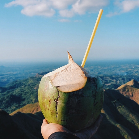 Fresh Coconut on top of a mountain