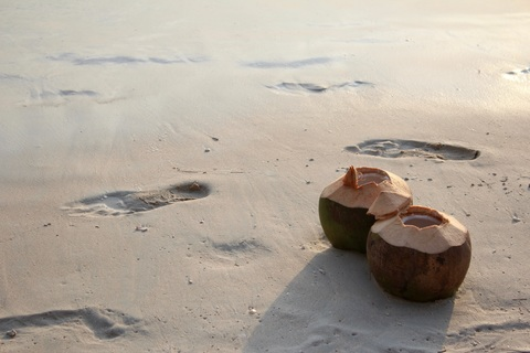 drinking coconut water for health